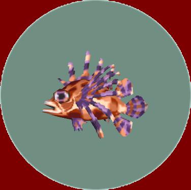 File:Zebra Turkeyfish (City Folk).png