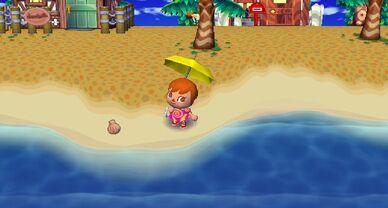 Animal Crossing CF 018