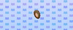 Ear shell