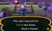 Tom ACNL Home Setup