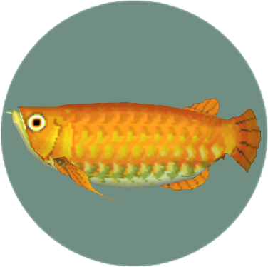 File:Arowana (City Folk).png