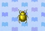 Scarab beetle encyclopedia (New Leaf)