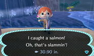 Salmon Caught