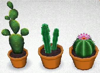 File:Cactus set.jpg