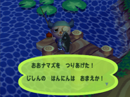 Giant Catfish (Animal Crossing caught)