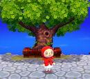 Plaza (Animal Crossing: New Leaf)
