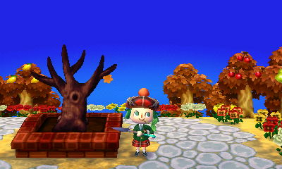 File:Plaza town-tree-no-leaves-november.jpg