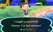SweetfishCatch