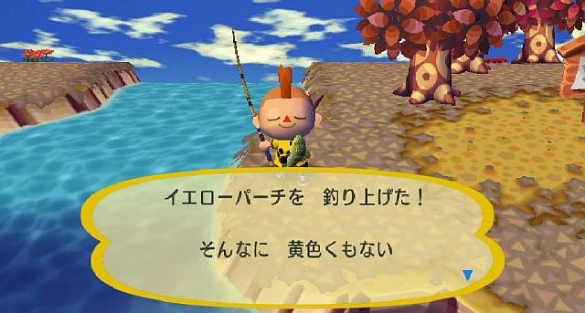 File:Cf yellowperch jp.jpg