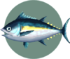 Tuna (City Folk)
