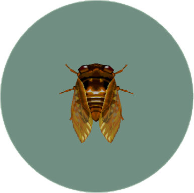 File:Brown Cicada (City Folk).png