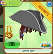 Pirate Hat (Gray)