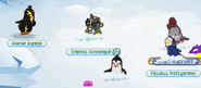 Penguins-Only-Party Snow-Patch