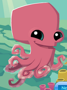 Updated Octopus
