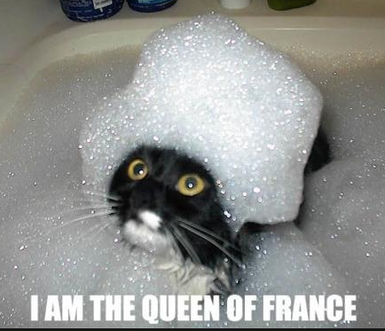 File:French lolcat.png