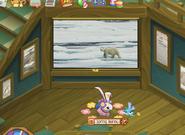 Mission Polar Bear Rescue