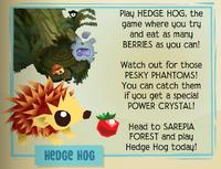 Jamaa-Journal Vol-069 Hedge-Hog
