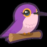 Hummingbird graphic
