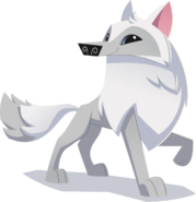 Renovated art arctic wolf