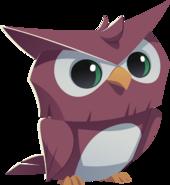 Purple owl graphic