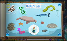Journey Book of Bahari Bay