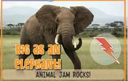 Elephantjag
