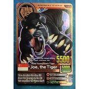 L UoIwanimal-kaiser-english-bronze-joe-the-tiger-evo-2-a-044
