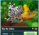 Kip the Zebra