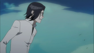 Uryu watching Ichigo fight