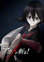 Akame ga Kill BD05