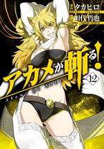 Akame ga Kill Vol 12