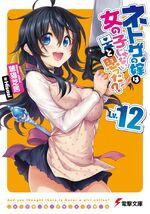Netoge no Yome Light Novel Vol 12