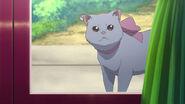 Fredrica as a cat (Chaika 2 Ep 01)