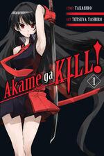 Akame ga Kill Vol 1 English
