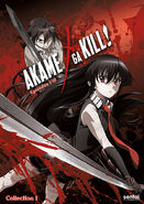 Akame ga Kill DVD Collection 1 (Sentai Filmworks)