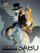 One Piece Episode of Sabo BD DVD Cover
