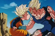 Goten sotmahc punched