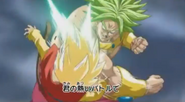 Hero vs broly5