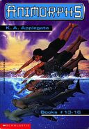 Animorphs books 13-16 box set