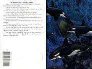 Animorphs 36 the mutation inside cover and quote