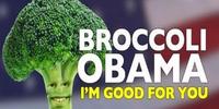 Annoying Orange: Broccoli Obama Presidential Campaign Video
