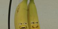 Bananas (Exploding Orange)