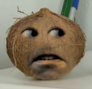 AO Coconut2