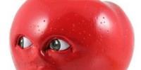 Midget Apple Toy