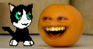 Annoying Orange meets Michu the cat