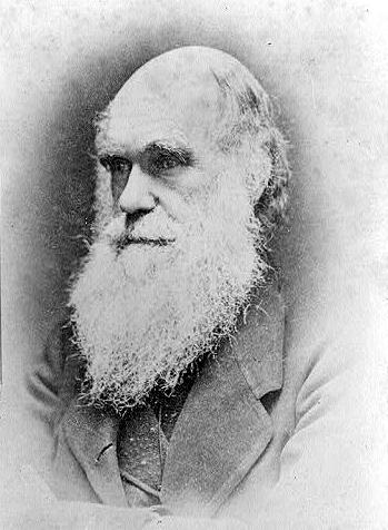 File:Charles Darwin.jpg