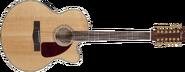 Fender CJ290SCE-12