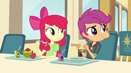 Apple Bloom and Scootaloo