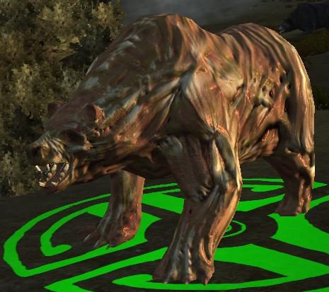 File:Diseased bear.jpg