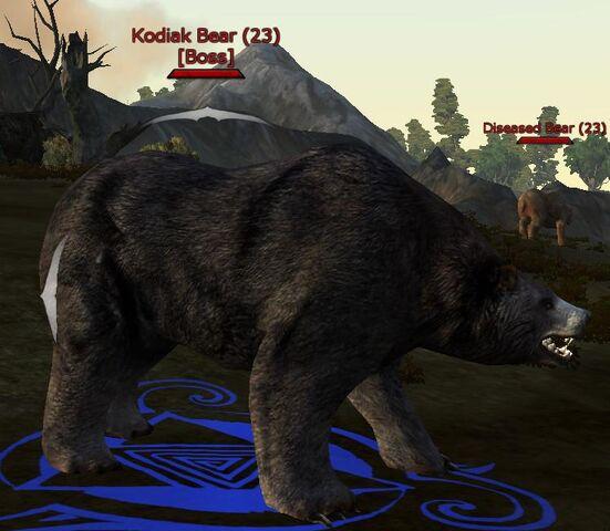 File:Kodiak bear.jpg